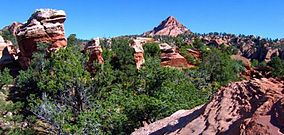 Red Butte Wilderness.jpg