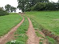 Red soil, Woodhouse - geograph.org.uk - 910046.jpg