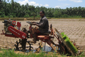 Redlands Rice-Transplanter-RP824.png