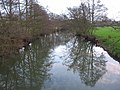 Reflections on the Mells River - geograph.org.uk - 325937.jpg
