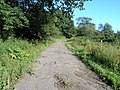 Remnant of an old road - geograph.org.uk - 517485.jpg