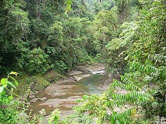 Barbilla National Park - The Dantas River in Barbilla.