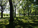 Risskov park 02.jpg