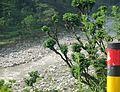 River 31.jpg