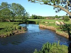 River Axe - geograph.org.uk - 440559.jpg