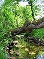 River Srebra in spring.jpg