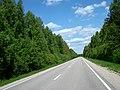 Road - panoramio - ---=XEON=--- (2).jpg