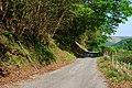 Road leaving Pont Rhyd-felin - geograph.org.uk - 800314.jpg