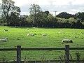 Road to Conwy, Clwyd (461619) (9470928274).jpg