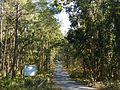 Road to Kakrebihar 02.jpg