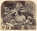 Roger Fenton (English - Still Life with Fruit and Decanter - Google Art Project.jpg