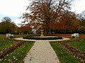 Rosecliff in the Fall (front yard).jpg