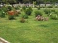 Roseto-di-roma-capitale---sito-di--il-cimitero-ebraico--dal-1645-fino-al-1934 9005796993 o 14.jpg