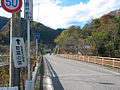 Route299-Ueno-Nippa.jpg