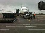 Ryanair-Cork1.jpg