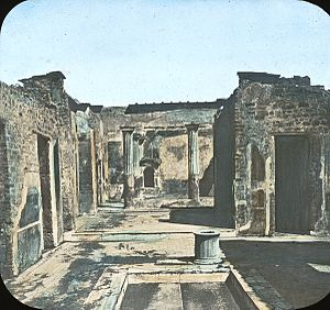 House of the Tragic Poet - House of the Tragic Poet, Pompeii. Brooklyn Museum Archives, Goodyear Archival Collection
