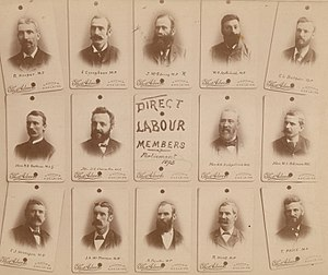 Lee Batchelor - ULP parliamentarians following the 1893 colonial election.