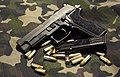 SIG Sauer P226 E2 - 10rd Magazine.jpg
