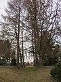 Sachgesamtheit, Kulturdenkmale St. Jacobi Einsiedel. Bild 47.jpg
