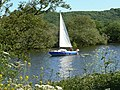 Sailing on the Trent - geograph.org.uk - 1338478.jpg