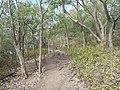 Sankt Lucia - panoramio - georama (10).jpg