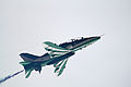 Saudi Hawks 3 (5969165438).jpg