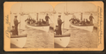 Scene at the Naval Rendezvous, Hampton Roads, Virginia, U.S.A, from Robert N. Dennis collection of stereoscopic views.png