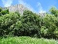Scenery in Vrachanski Balkan Nature Park - Outside Vratsa - Bulgaria - 09 (42916382672).jpg