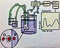 SchematicDiagramofHematologyAnalyzer2019.jpg
