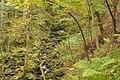Schonach im Schwarzwald - entlang der Elz Bild 1.jpg