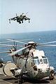 Sea King AEW and Sea Harrier FA2 on HMS Illustrious (R06) 1996.JPEG