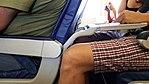 Seating arrangements in a Southwestern Boeing 737-700.jpg