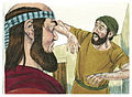 Second Book of Kings Chapter 5-12 (Bible Illustrations by Sweet Media).jpg