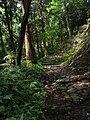 Sekirozan - 石老山 2010-7-31.JPG