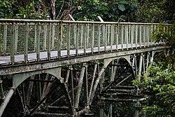 Sepilok Sabah Rainforest-Discovery-Centre-02.jpg