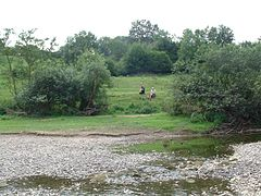 Severn-valley-england-2002.jpg