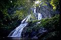 Shenandoah National Park SHEN9199.jpg