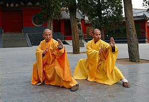 Mantis - Grandmasters of the Shaolin Temple, Shi DeRu and Shi DeYang, demonstrating the Southern Praying Mantis style of martial art