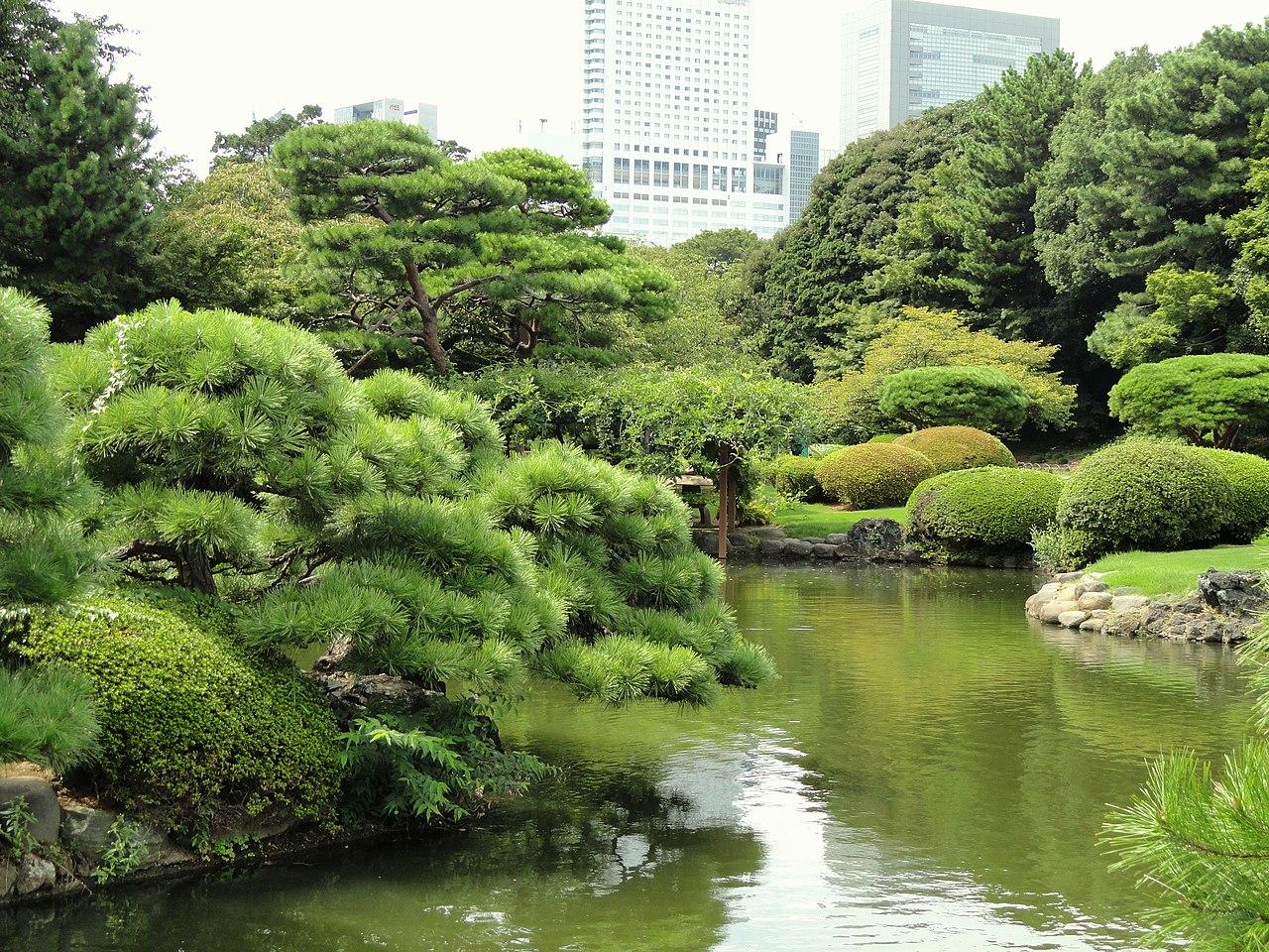 wow check out this beautiful shinjuku gyoen national On gyoen national garden