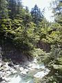 Shirakami Sanchi - panoramio - abu 9495 (1).jpg