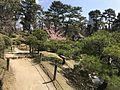 Shukkei Garden 6.jpg