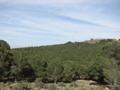 Sidi Maafa 01.png