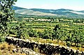 Sierra Norte 1979 05.jpg