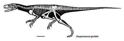 Silhouette reconstruction of Sanjuansaurus.jpg