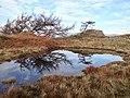 Skelwith, UK - panoramio (5).jpg