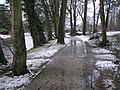 Slushy path, Omagh - geograph.org.uk - 1691420.jpg