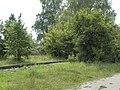 Solvayovy lomy-Sv. Jan pod Skálou - panoramio (2).jpg