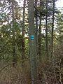 Spokane, WA, USA - panoramio (30).jpg