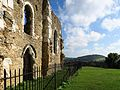 St Catherine's Chapel, on the North Downs Way.jpg