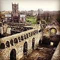 St Davids Cathedral viewed from the Bishops Palace.jpg